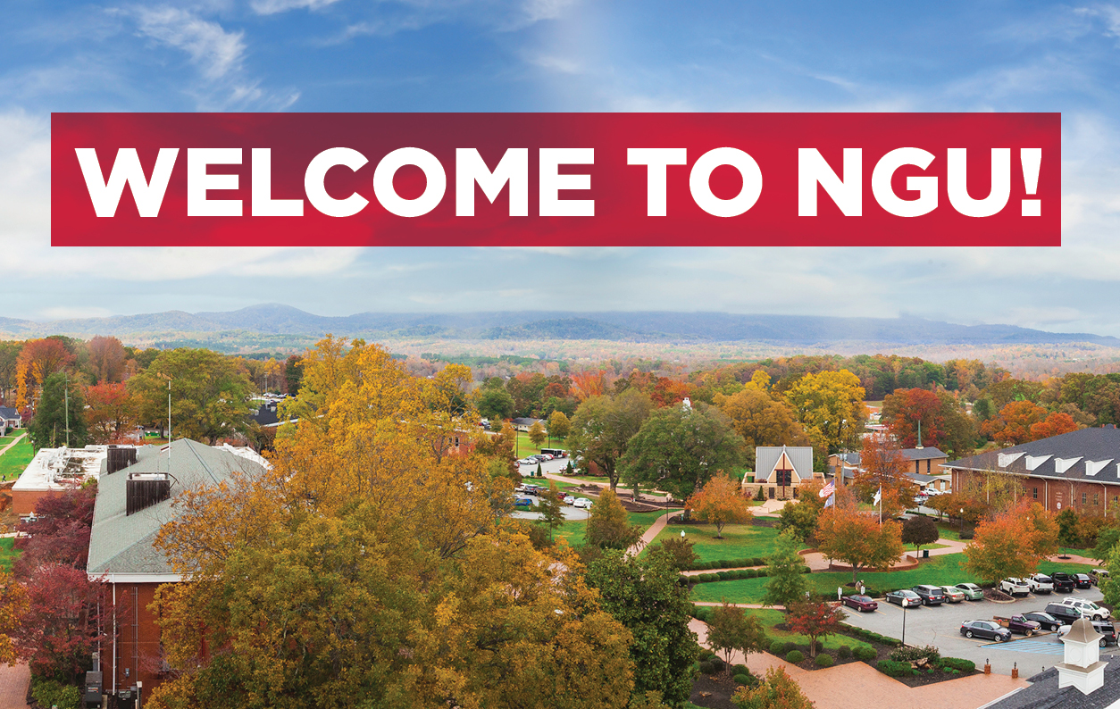 Welcome To NGU!
